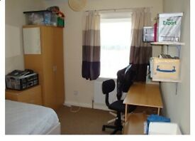 Room in 3 bed house Tang hall