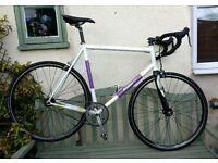 Condor pista fixie / single speed bike