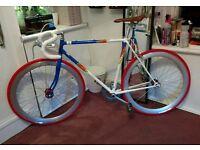 Vintage Scorpio Refurbished Road Bike (Single Speed/ Fixed Gear)