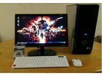 Reduced Ssd Fast Computer PC Desktop & Hardrives Setups