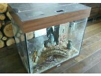 Juwel lido 120 fish tank + extras