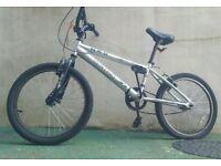 Trick nuts - stunt pegs and a bmx bike