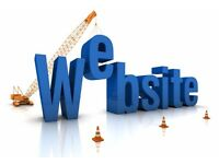 £295 Website development