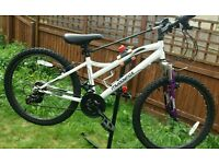 Girls muddyfox bike
