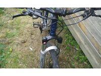 Giant 2.5 XTC Mountain bike mens or female
