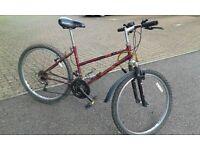 Men's bike and women's bike