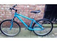 cheap adult mountain bike