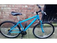 Cheap adult Apollo mountain bike only £30 ride away