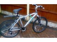 £45 Raleigh Mountain Bike