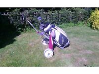 Ladies golf clubs right handed