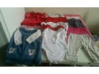 Baby girl bundle 9,12 month over 50 items