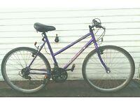 Ladies Townsend bike