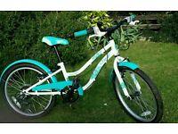 20 inch girls bike from (5 to around 9 years) hardly used