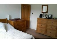 Great double room in a vegetarian house