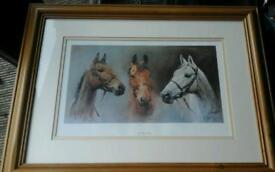 """""""We three Kings"""" racehorse picture"""