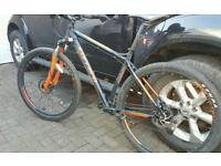 Carrera sulcata 29er mountain bike