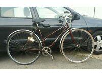 Ladies Dawes hybrid lightweight townbike