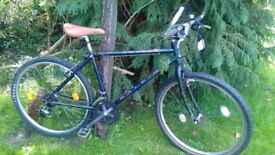 Raleigh Amazon 17 in frame,superb condition 21 speed,runs perfectly