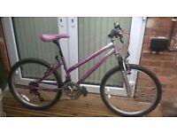 Girls Falcon Mountain Bike 24 inch wheels