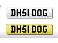Private Registration (ideal for dog lover) DH51DOG