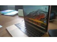 Apple mac retina 12 inch Early 2015 (needs a new battery)