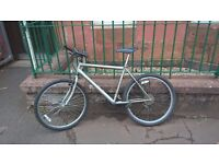 Rayleigh mountain bike-excellent condition