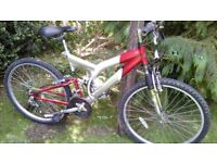 alloy full suspension apollo 18 in frame,very tidy,suit lady or gent