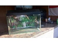 fish tank with gravel and comes pump and lid with light fitting