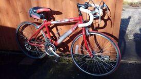 Junior Road Bike