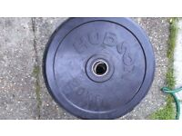 290 KG Hudson USA Olympic Rubber Weight Plates