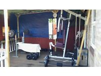 complete gym equipment- machine & freeweights