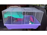 Hamster cages & accessories