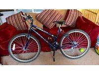 Apollo ladies Mountain Bike, Exact 3600