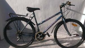 LARGE TO XL TALL 26 inch LADY SPORTEK  Hybrid Bike riders 4'08 to 5'09 Tall  customize for the city & fall weathe