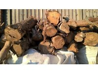 Seasoned Logs for sale. Collection only. Price per bundle.