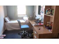 Glasgow university student Accomodation