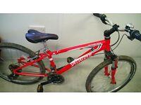 """Specialized 24"""" wheel bike swap"""