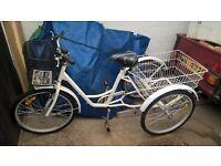 tricycle three wheel bike