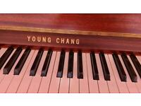 Young Chen Upright Piano