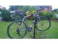 Carrera Gryphon (Hybrid) Bike - £80