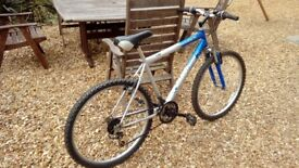 Mountain bike (silver/blue)