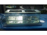 250 liter fish tank