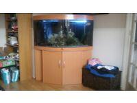 jewel 350 coner fish tank and cabinet