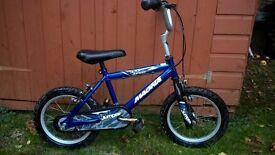 children bike, 12 inch wheels , metallic blue