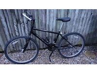 Raleigh mountain bike,Ashford,Kent