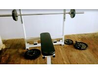 Ex Gym weight bench with 100kg cast iron weights