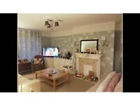 Lovely furnished double room avail 29th January in gay houseshare. Beautiful house. Bills included.
