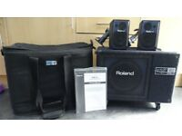 Roland PM-3 Personal Monitor System Sub woofer and satellite speakers