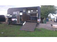 diesel horsebox / m/home