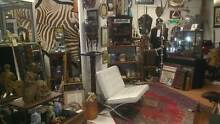 COLLECTABLES AND CURIOSITIES FOR SALE Fremantle Fremantle Area Preview